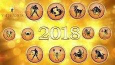 Was bringt das Venusjahr 2018? Mit dem Jahreshoroskop von Vidensus für 2018 bist Du bestens informiert und optimal vorbereitet! Neugierig? Hier findest Du alle Sternzeichen im Überblick. #jahreshoroskop #horoskop #sternzeichen #venusjahr #vidensus #kartenlegen #hellsehen #astrologie #gratisberatung #esoterik #spiritualität