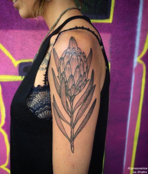 Amato 24 best Tattoo images on Pinterest | Botanical tattoo, Tattoo  IC42