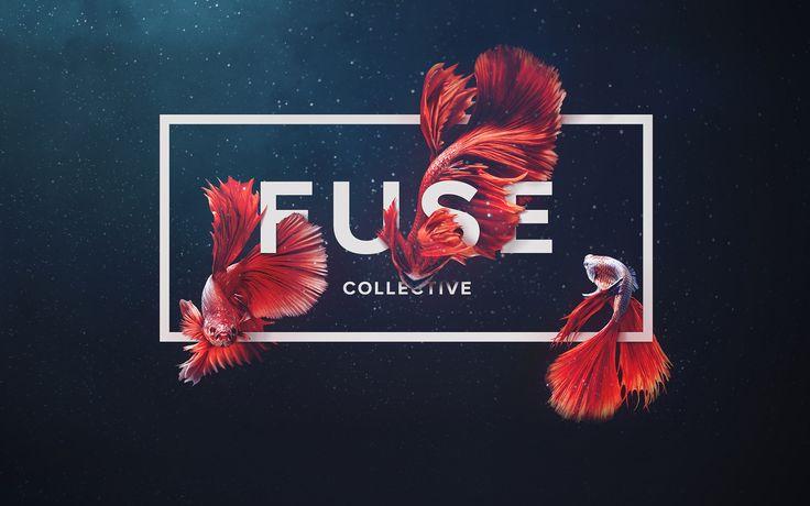 Fuse Collective — http://www.fusecollective.com/en/