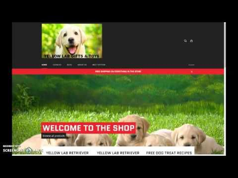 Labrador Retriever Puppies Iowa Yellow Labradors In Iowa Get A
