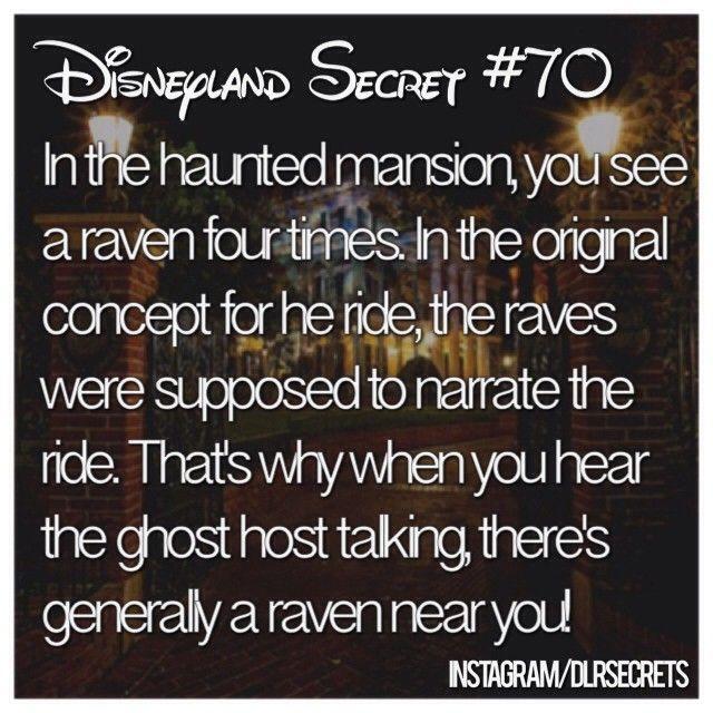 ✨ too magical ✨ #Disneyland #dlrsecrets • follow me on @disneysounds