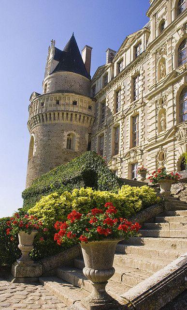 Steps to Chateau de Brissac Loire Valley France