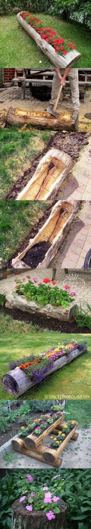 Boîte a fleurs taillée dans un tronc d'arbre .