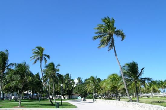 Miami Beach Boardwalk - Miami Beach - Reviews of Miami Beach Boardwalk - TripAdvisor