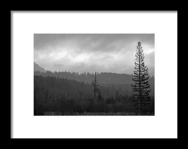 Black And White Landscape Framed Pictures