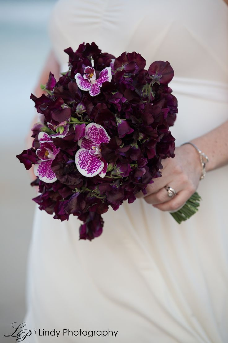 Deep Purple Sweet Pea with Fuschia spotted Phalaeonopsis orchids . Elopements with Lindy Photography www.bloomsofnoosa.com.au