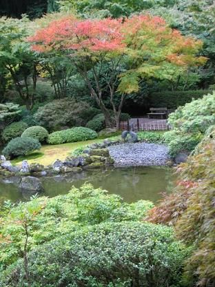 Koi Pond Cleaning for Spring Maintenance