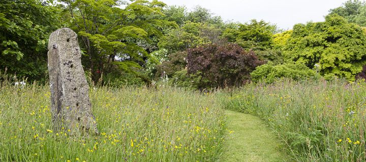 A mown path of grass leads through long grass of a wild flower meadow, by a huge granite marker