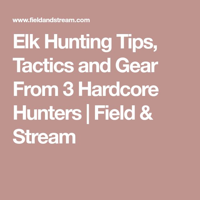 Elk Hunting Tips, Tactics and Gear From 3 Hardcore Hunters | Field & Stream