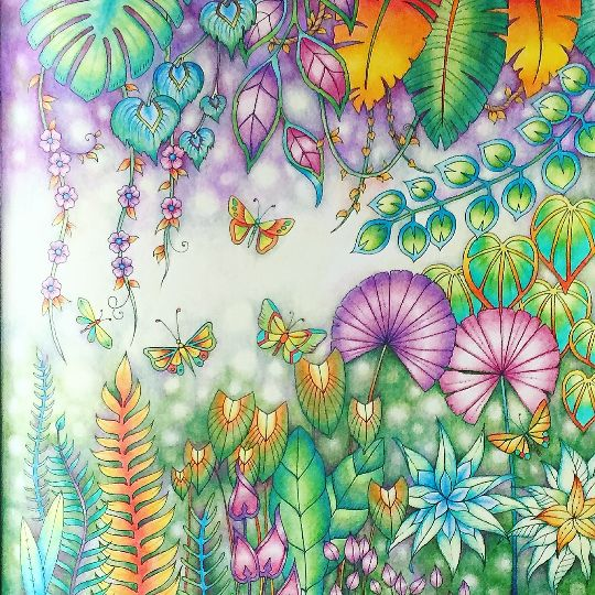 138 Best Colouring Magic Jungle Images On Pinterest
