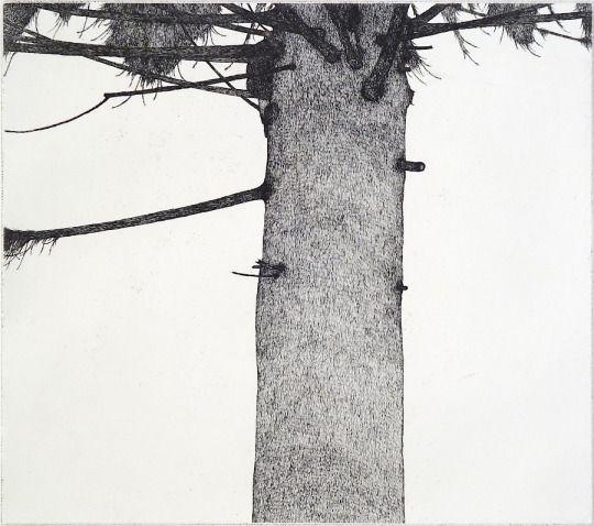 Art Hansen, Man in a Tree, 1976, etching