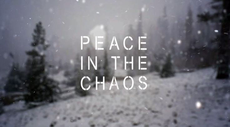 Peace in the Chaos. spotted poster at a board shop this wknd. want to find.