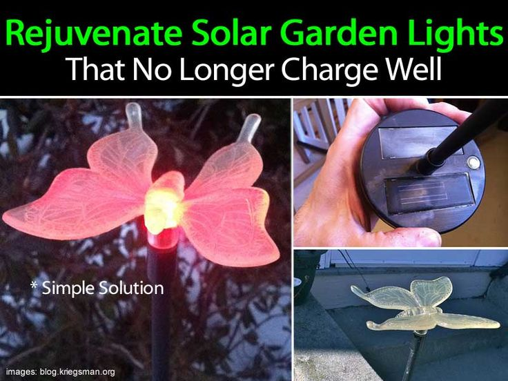 Solar Lights Donu0027t Charge Anymore? Try This To Rejuvenate The Lights [Video]