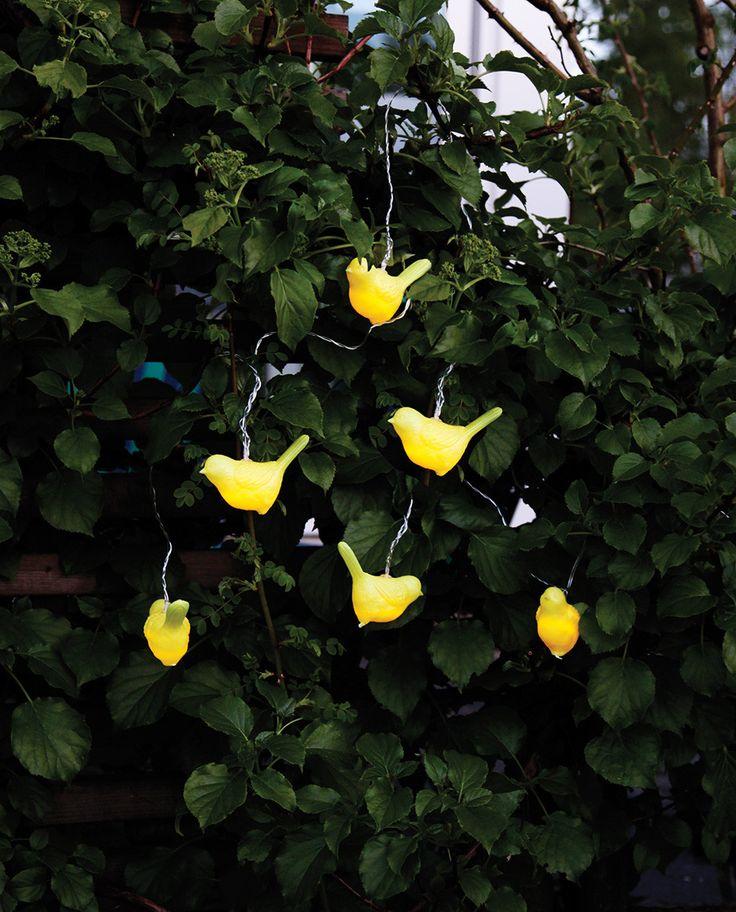 Birdy LED Lysslynge fra Star Trading er en kjempesøt slynge som du kan bruke til å dekorere et bord, en plante eller andre elementer i hage og utemiljø. Den har seks gule fugler med hver sin LED lyskilde.