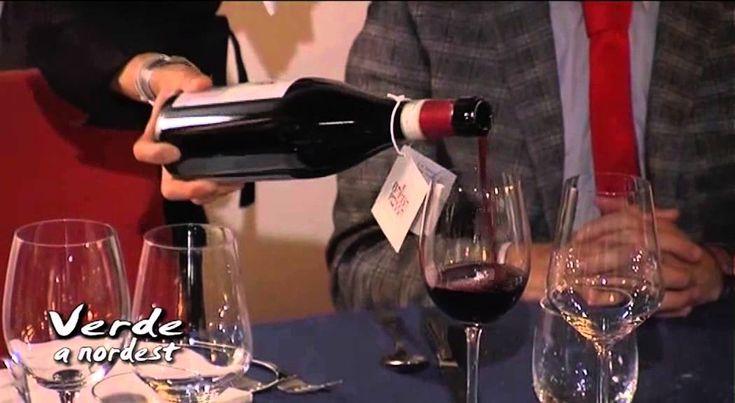 Presentazione del #BARBAROSSA 2010 #MALANOTTE DEL #PIAVE #DOCG da #Paolo #Ianna per Cantina Pizzolato