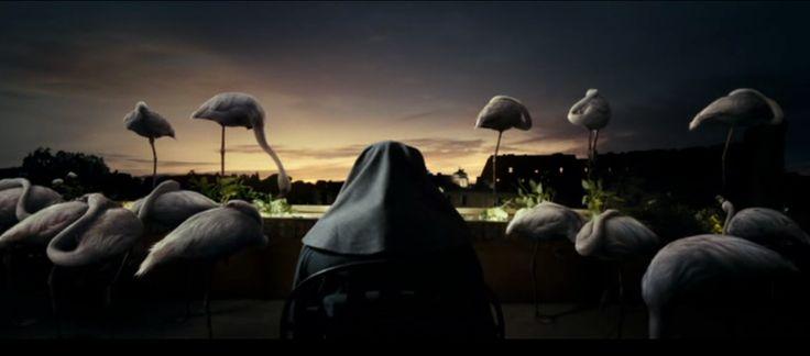 La Grande Bellezza (2013) Resting Flamingos over the Colosseum