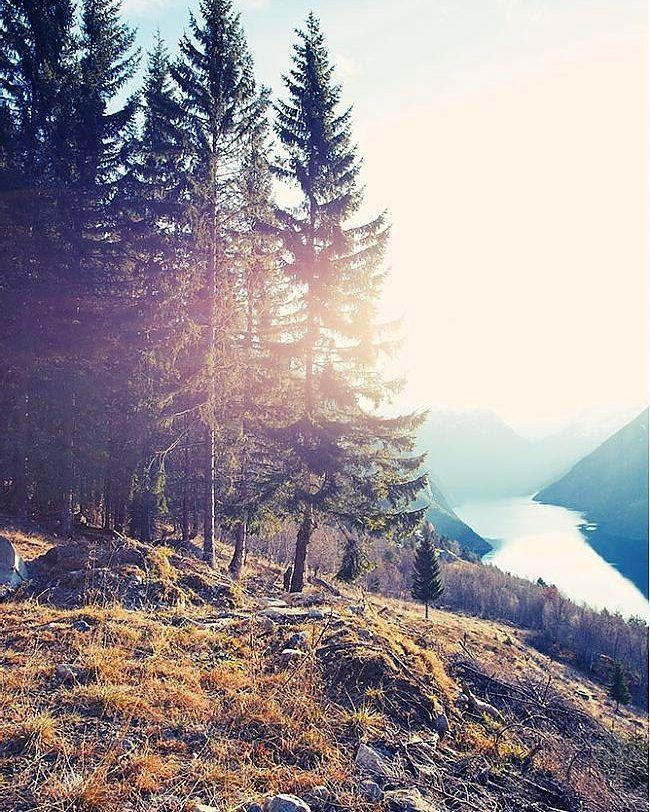 #nature #instagramanet #sky #sun #mountains #forest #river ...