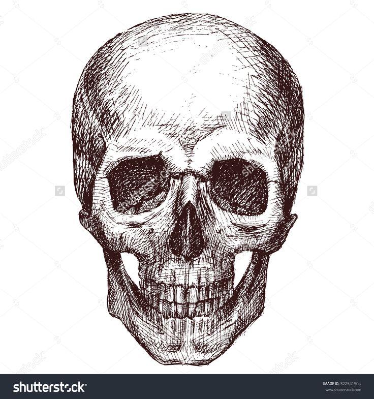 Skull with mustache inch sticker white vinyl stickers die cut