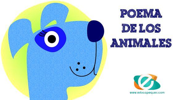"""Poema de los animales. """"Mis amigos los animales"""" un poema de J. David Collazo Dubra para leer a los más peques. Poemas infantiles Educapeques"""