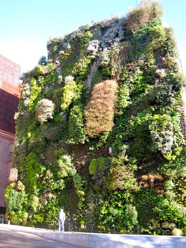 Garden Ideas Amazing Vertical Gardening Ideas Pinterest And 116