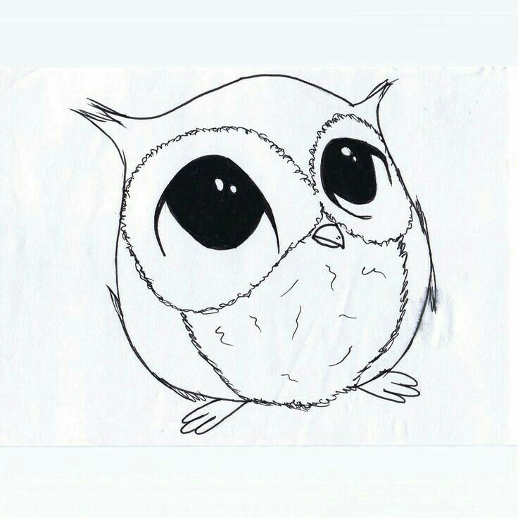 75 best owl cartoon sketches images on pinterest barn for Cartoon owl sketch