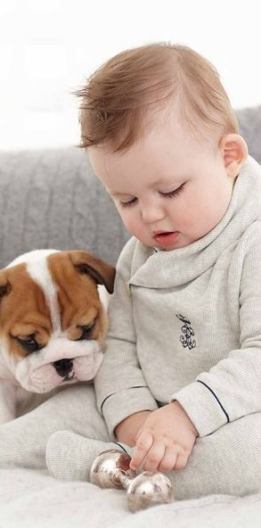 English Bulldog puppy & his best friend