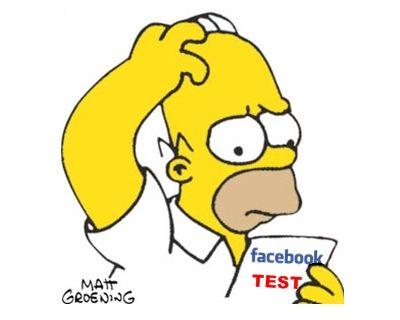 Avete ricevuto anche voi la richiesta da parte di facebook di partecipare al suo sondaggio?