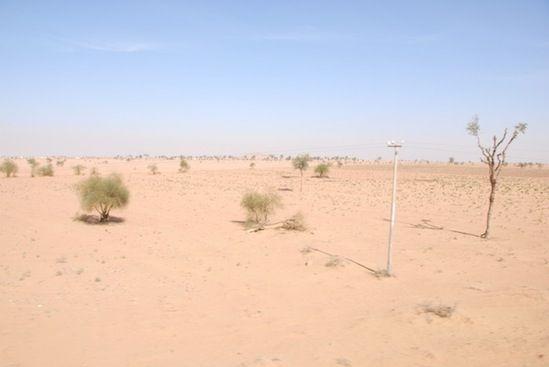 タール砂漠の町ジャイサルメールへ - 日記