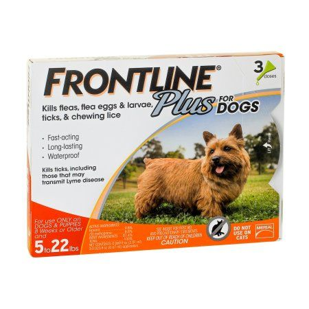 Frontline Plus Small Dog Flea Tick Savings Bundle Tick Control For Dogs Frontline Plus For Dogs Dogs And Puppies