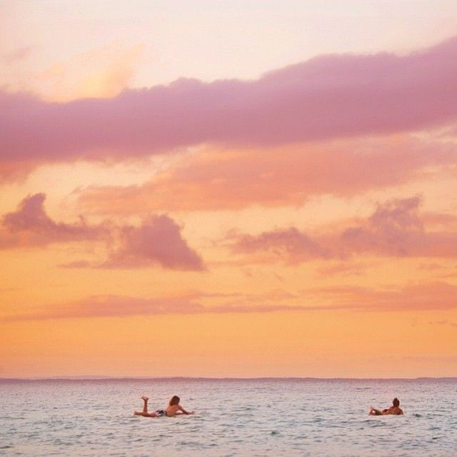 These two surfers decided to have one more paddle out before calling it a day at the Noosa Festival of Surfing.