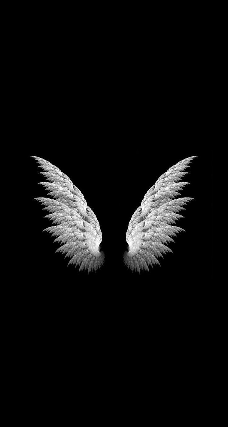 Black Wallpaper Free Is 4k Wallpaper Are Very Cool Wallpaper Click To Download Black Wallpaper Cool Black Wallpaper Wings Wallpaper Black Background Wallpaper