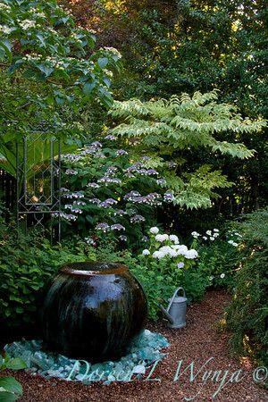 textures in the garden...