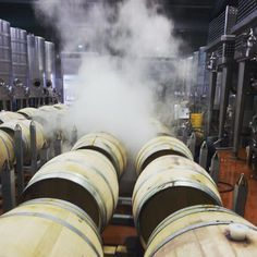 Steam cleaning in the winery today.