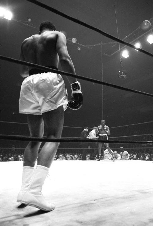 Muhammad Ali (znany jako Cassius Clay) w swoim rogu, przygotowujący się do walki z Doug Jonesem w Madison Square Garden.  Nowy Jork, Nowy Jork, 3/13/1963