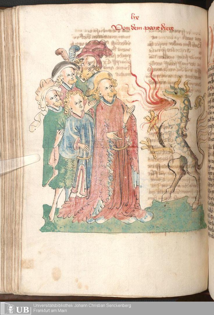 """Das Buch Der Natur"", Haganua Circa 1440. Page 218. Via: University Goethe Library. http://sammlungen.ub.uni-frankfurt.de/msma/content/titleinfo/1971583"