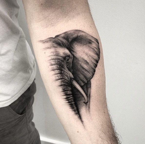 Half an elephant tattoo on forearm by Lazer Liz