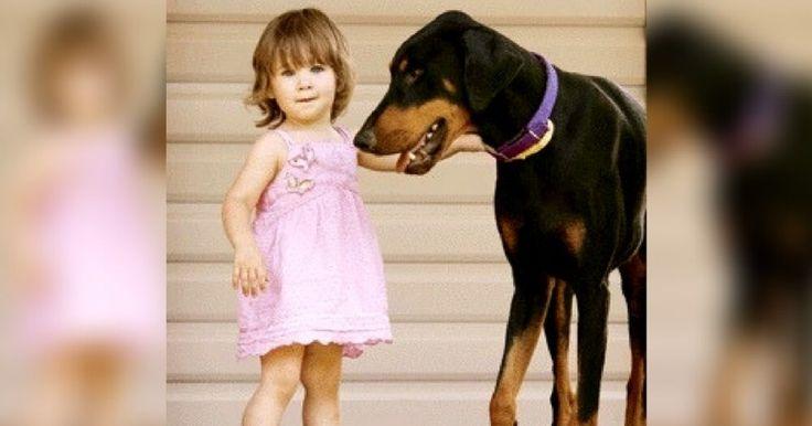 Το Ντόπερμαν άρπαξε την Δίχρονη Κόρη της και την Πέταξε μακρυά. Μόλις η Μαμά κατάλαβε τον λόγο, ΠΑΓΩΣΕ… Crazynews.gr