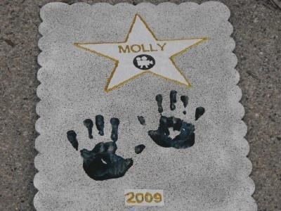 Walk of Fame craft for movie star party