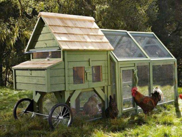 Best 20 mobile chicken coop ideas on pinterest portable for Small portable chicken coop