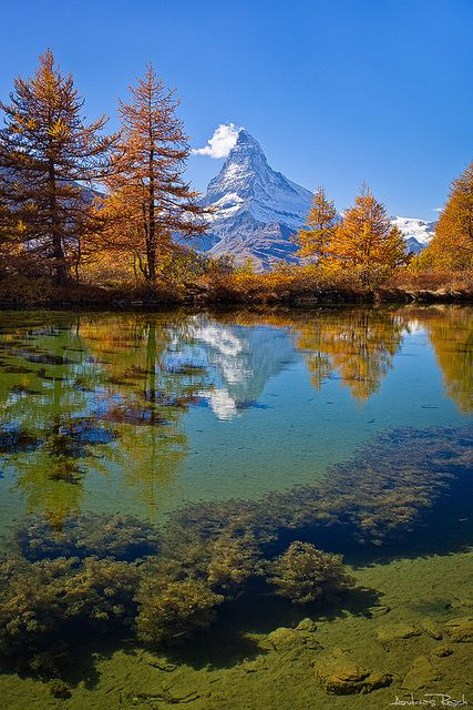 The Matterhorn reflected in the Grindjsee, Valais, Switzerland