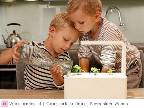Met de Smart Herb Garden blijven kruidenplantjes wél leven, zonder dat u er moeite voor doet. Ook in een kleine of donkere keuken wordt kruiden verbouwen een eitje door middel van het ledlicht, waterreservoir, sensoren en pompjes die in deze plantenbak zijn verwerkt. Maar wat er echt voor zorgt dat kruidenplantjes geen vroegtijdige dood sterven, is de nanotechnologie die verwerkt is in de potgrond.