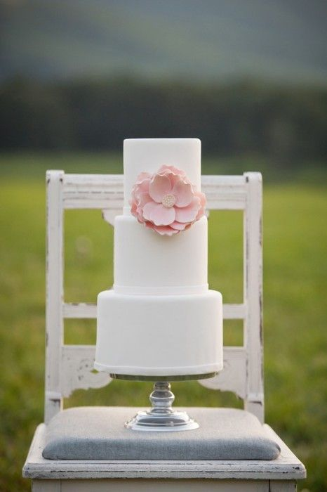 beauty in simplicity. white cake, pink blossom. #wedding #party
