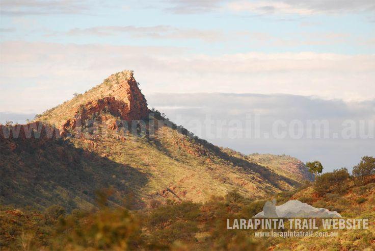 Spectacular mountain ranges offer great scenery along Section 2 Larapinta Trail. © Explorers Australia Pty Ltd 2013