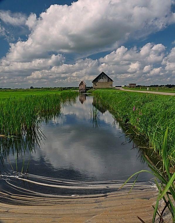 Melkmeent, Naardermeer, Naarden. The Netherlands