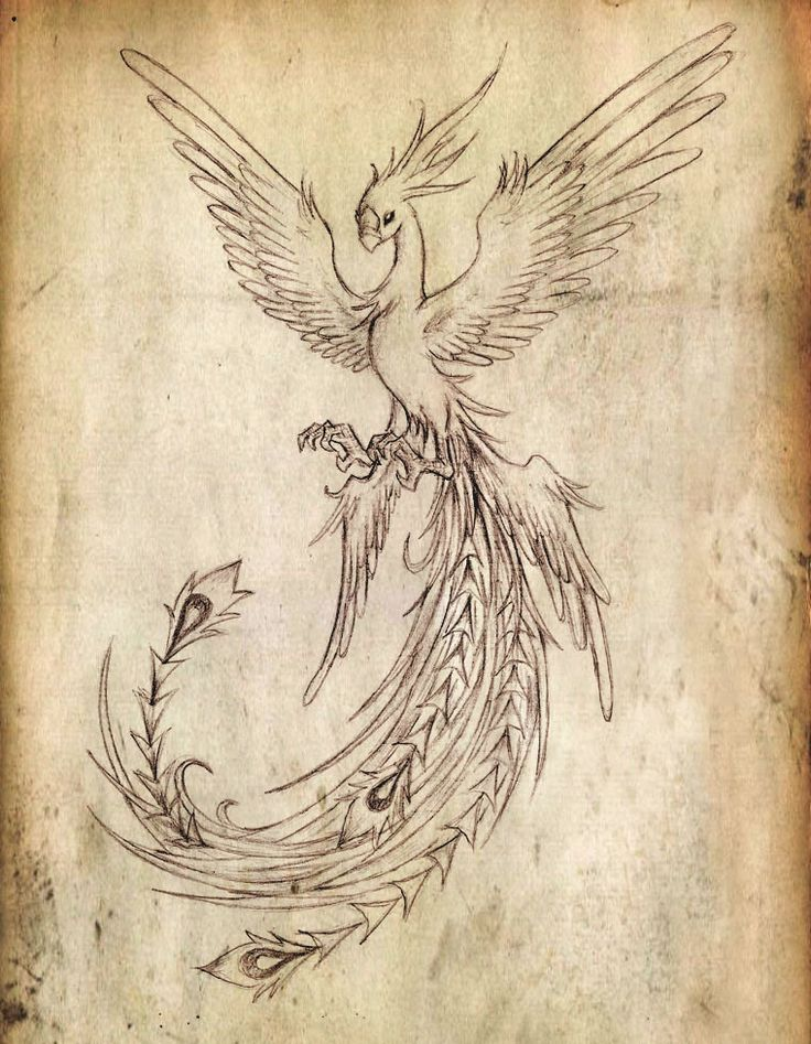 Flying Phoenix Bird Tattoo Design | Tattooshunt.com