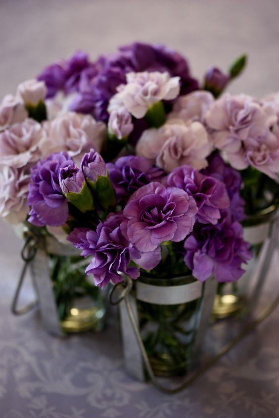 "katysflowersandantiques: "" Dianthus caryophyllus flowers Source """