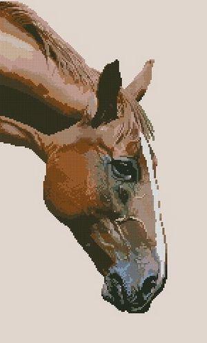 Аппалуза - Лошади - Животные - Схемы в XSD - Кладовочка схем - вышивка крестиком