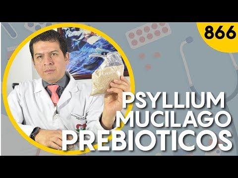 Psyllium plantago sirve para adelgazar