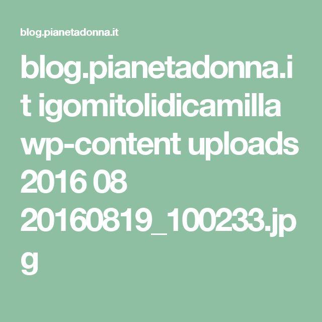 blog.pianetadonna.it igomitolidicamilla wp-content uploads 2016 08 20160819_100233.jpg