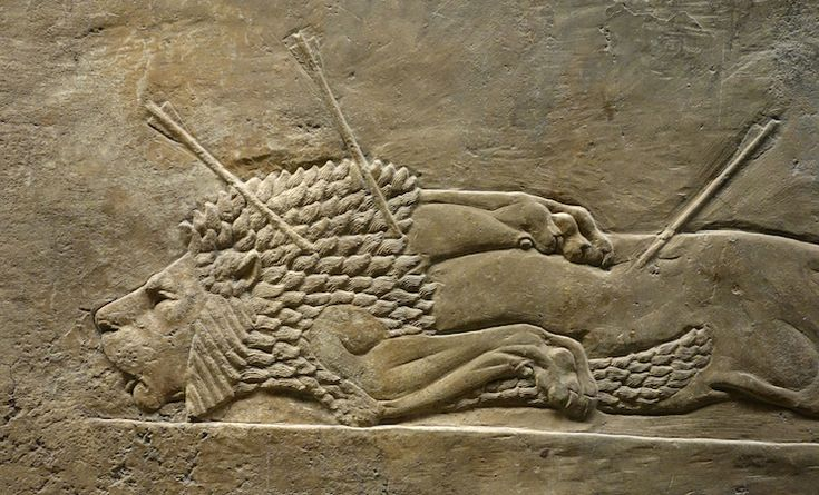 Lion Hunts of Ashurbanipal (ruled 669-630 B.C.E.), c. 645 B.C.E., gypsum,Neo-Assyrian, hall reliefs from Palace at Ninevah across the Tigris from present day Mosul, Iraq (British Museum)